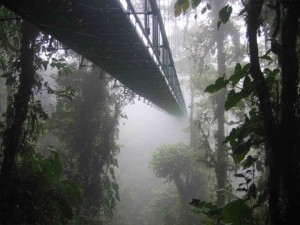 28-skywalkmonteverde
